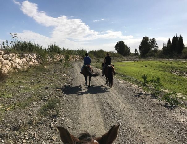 Horseriding 2 hours route